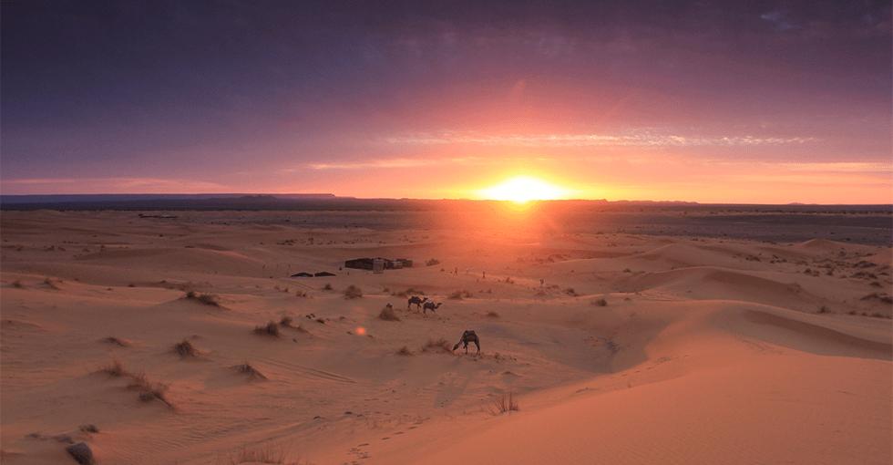 Marokkansk ørken i solnedgang