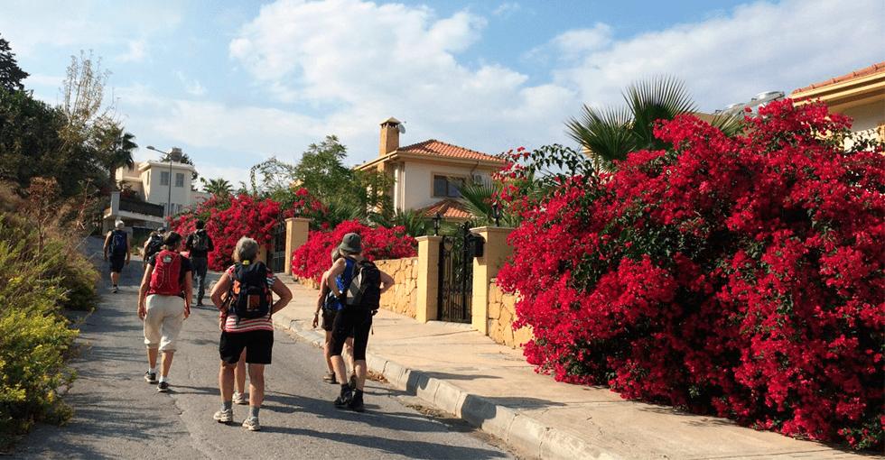 Kypriotiske gate med masse røde blomater