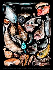 Trykk av Hilde Thomsen: Fisk langs Jærkysten