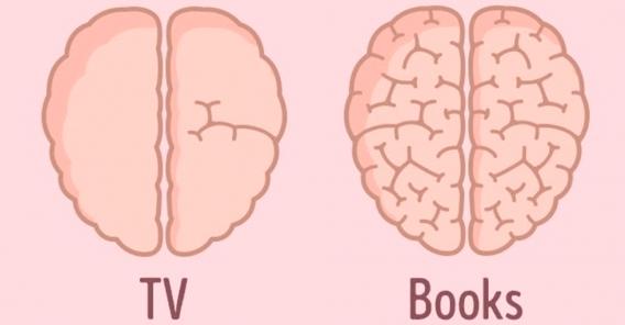 to tegninger av hjernemasse. En hjerne fra en bokleser og en fra en tv-titter. Bokleserens hjerne ser best ut.