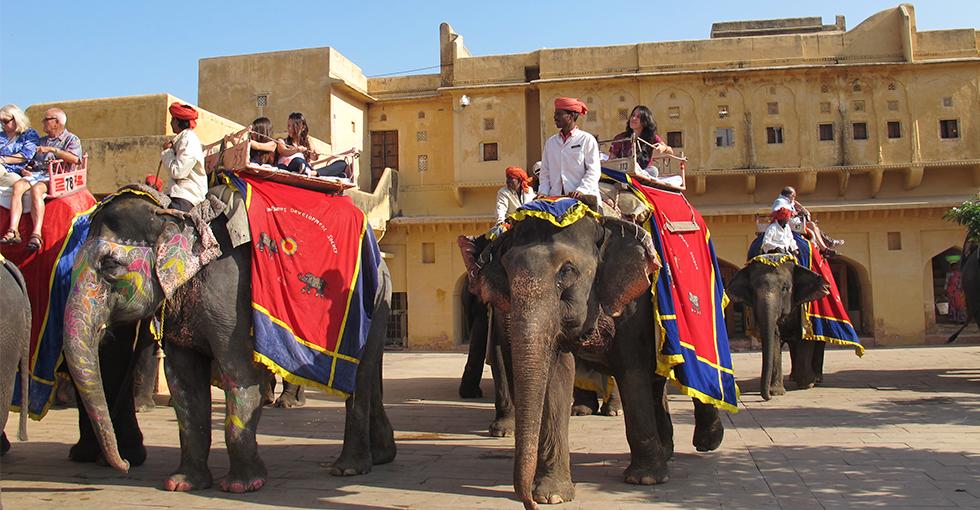 Indere ridende på elefanter