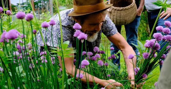 Frode Ljosdal plukker gressløk