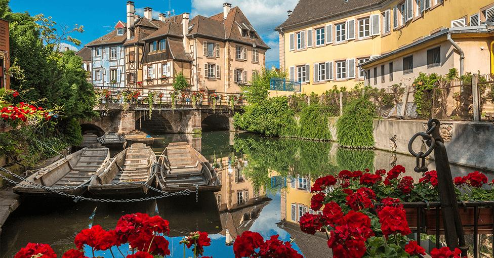 Røde roser langs elvebredden