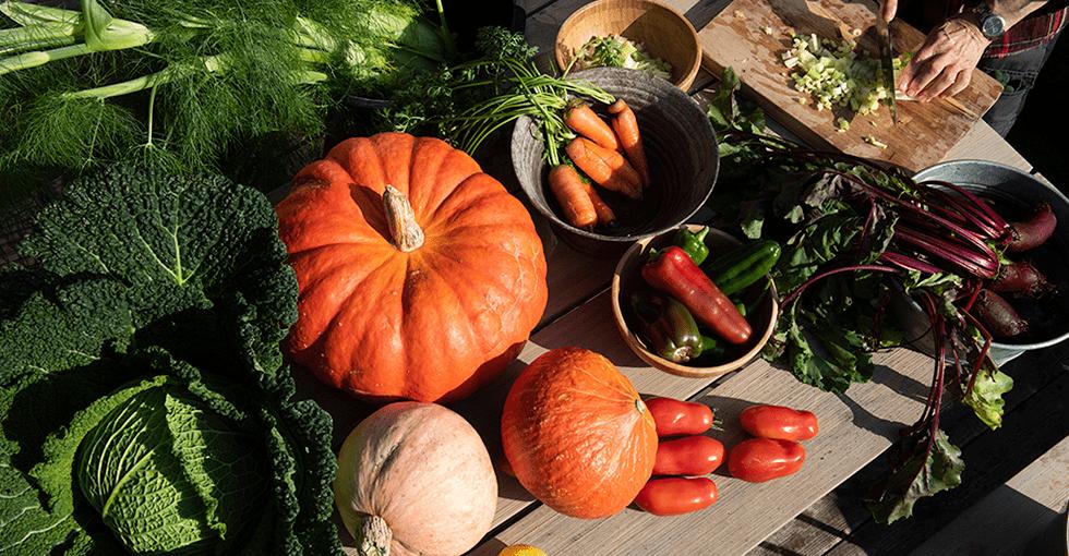 høstens grønnsaker